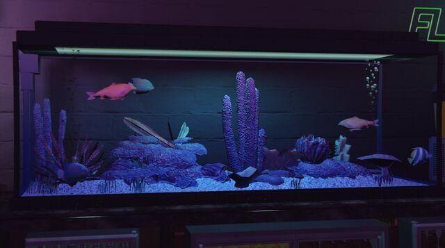 File:OrnamentalFish-GTAV-VanillaUnicorn.jpg