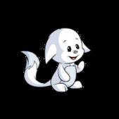 Kacheek white