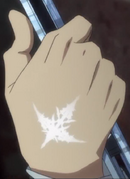 Shuu's Power of the King mark clear view