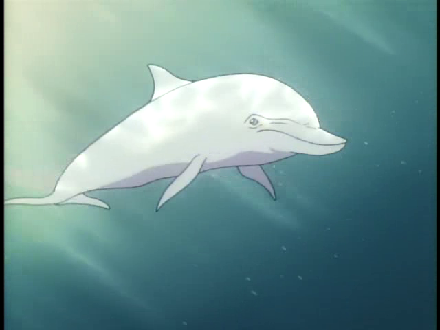 File:White Dolphin pic.png