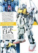 MSN-00100