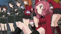 Rosehip-tank-crew-selection-uni