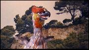 Terrobird