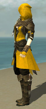 Shining Blade Uniform F dyed side alternate