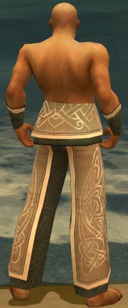 File:Monk Tyrian Armor M gray arms legs back.jpg
