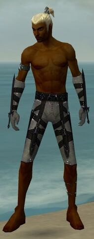 File:Assassin Obsidian Armor M gray arms legs front.jpg