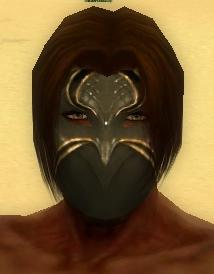 File:Mesmer Norn Armor M gray head front.jpg