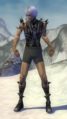 File:Necromancer Obsidian Armor M gray arms legs front.jpg