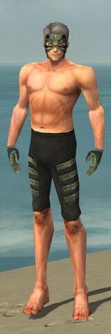 File:Mesmer Elite Kurzick Armor M gray arms legs front.jpg