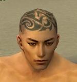 File:Monk Elite Kurzick Armor M gray head front.jpg