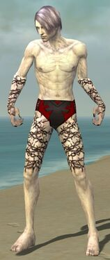 Necromancer Elite Scar Pattern Armor M gray arms legs front