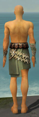 File:Ritualist Canthan Armor M gray arms legs back.jpg