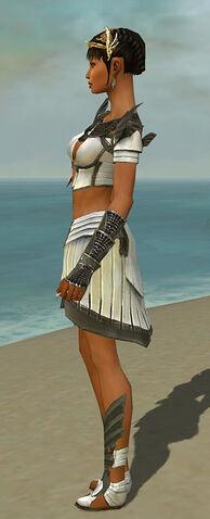 File:Paragon Ancient Armor F gray side.jpg
