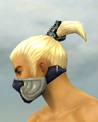 File:Assassin Norn Armor M dyed head side.jpg