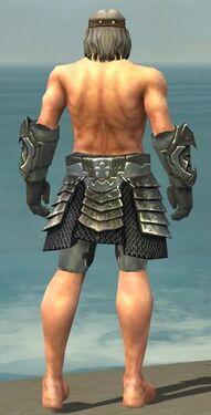 Warrior Elite Templar Armor M gray arms legs back