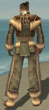 Monk Norn Armor M gray back