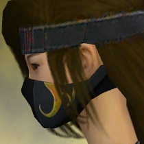 File:Assassin Vabbian Armor F dyed head side.jpg