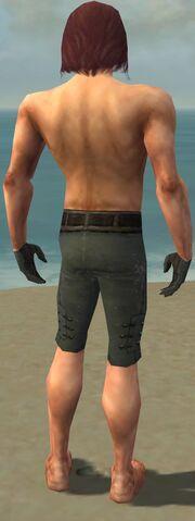 File:Mesmer Obsidian Armor M gray arms legs back.jpg