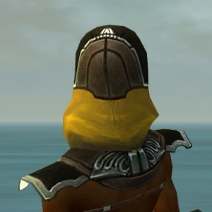 File:Dervish Asuran Armor F dyed head back.jpg