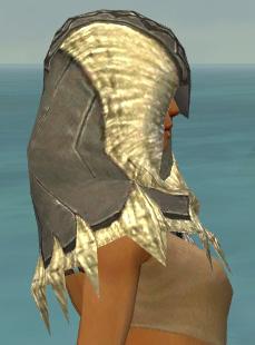 File:Dervish Norn Armor F gray head side.jpg
