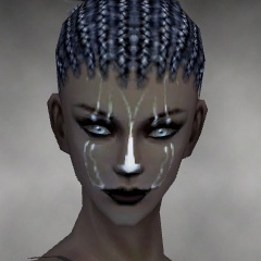 File:Necromancer Elite Sunspear Armor F gray head front.jpg