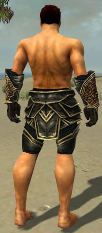 File:Warrior Kurzick Armor M gray arms legs back.jpg