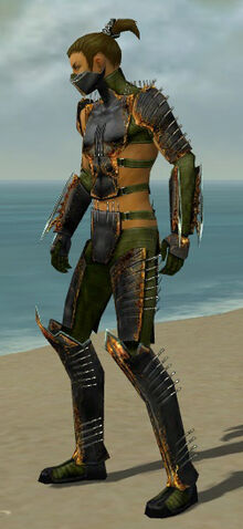 File:Assassin Exotic Armor M dyed side.jpg