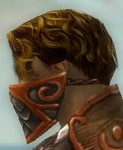 File:Ranger Elite Canthan Armor M dyed head side.jpg