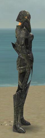 File:Warrior Elite Platemail Armor F gray side.jpg