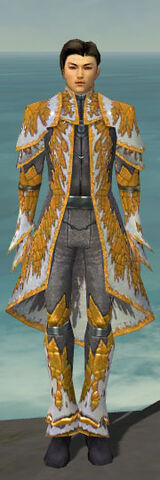 File:Elementalist Iceforged Armor M dyed front.jpg