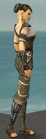 File:Monk Shing Jea Armor F gray side.jpg