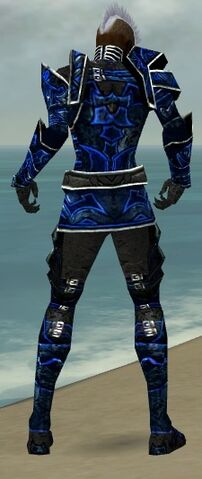 File:Necromancer Fanatic Armor M dyed back.jpg