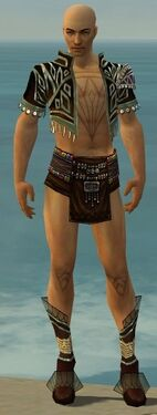 Ritualist Vabbian Armor M gray chest feet front