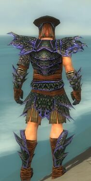 Warrior Luxon Armor M dyed back