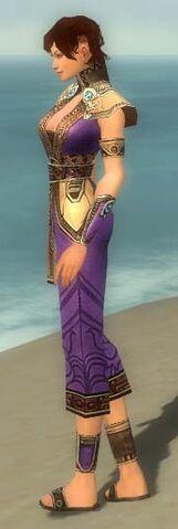 File:Monk Asuran Armor F dyed side.jpg
