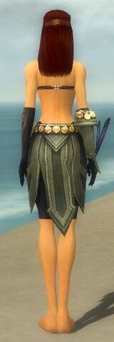 File:Ritualist Elite Kurzick Armor F gray arms legs back.jpg