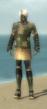 Mesmer Elite Canthan Armor M gray front