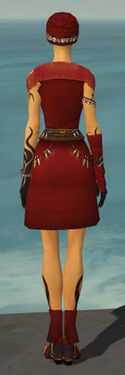 Ritualist Shing Jea Armor F dyed back