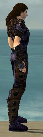 File:Ranger Obsidian Armor M dyed side alternate.jpg