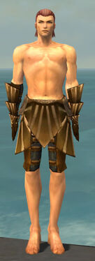 Ranger Sunspear Armor M gray arms legs front