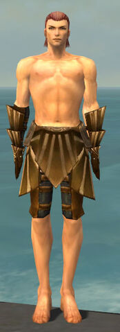 File:Ranger Sunspear Armor M gray arms legs front.jpg