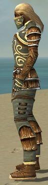 Ranger Shing Jea Armor M gray side