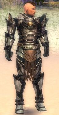 Warrior Elite Sunspear Armor M nohelmet