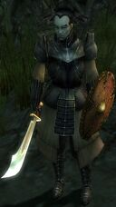 Kommandant Aren