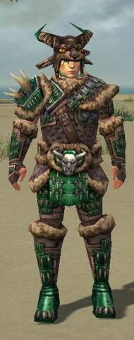 File:238px-Warrior Ascalon Armor Male green full front.jpg