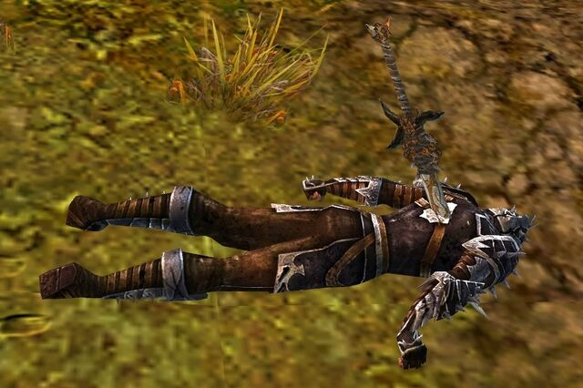 File:Fallen Vanguard Soldier.jpg