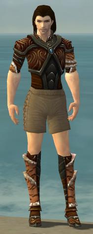 File:Ranger Vabbian Armor M gray chest feet front.jpg