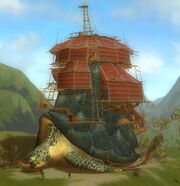 Settlement Turtle