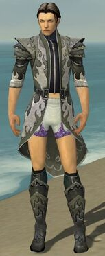 Elementalist Elite Flameforged Armor M gray chest feet front