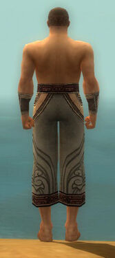 Monk Asuran Armor M gray arms legs back